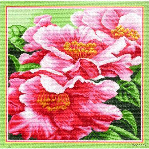 """Канва с нанесенным рисунком """"Розовые пионы"""""""