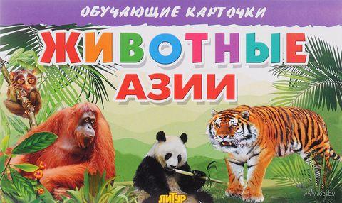 Животные Азии — фото, картинка