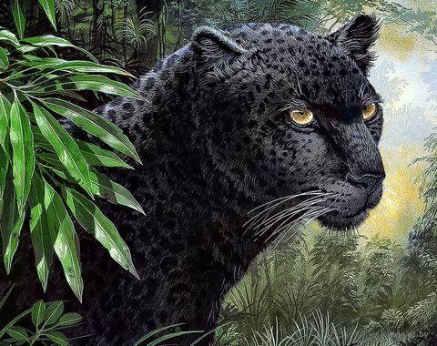 "Алмазная вышивка-мозаика ""Пантера"" (380х480 мм) — фото, картинка"