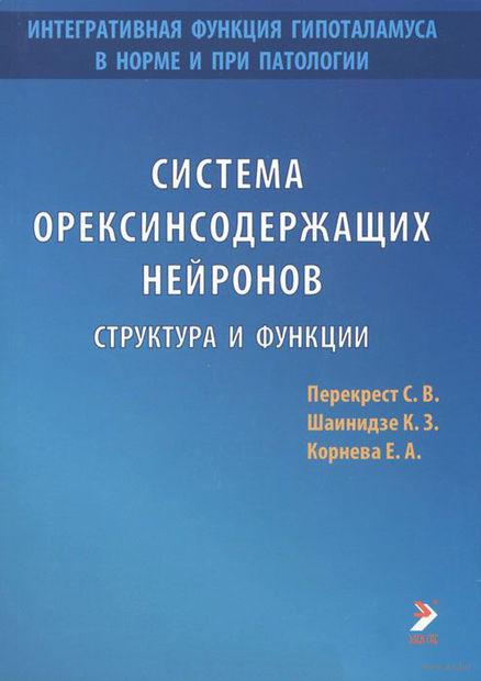 Система орексинсодержащих нейронов. Структура и функции. К. Шаинидзе, С. Перекрест, Е. Корнева