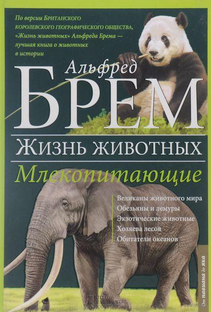 Жизнь животных. Том 4. Млекопитающие. П-Я (в 10 томах) — фото, картинка