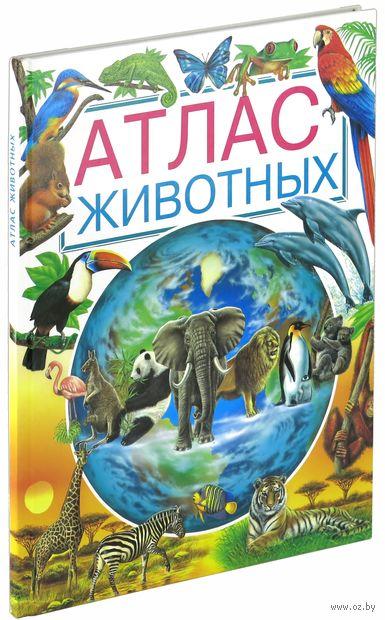 Атлас животных — фото, картинка