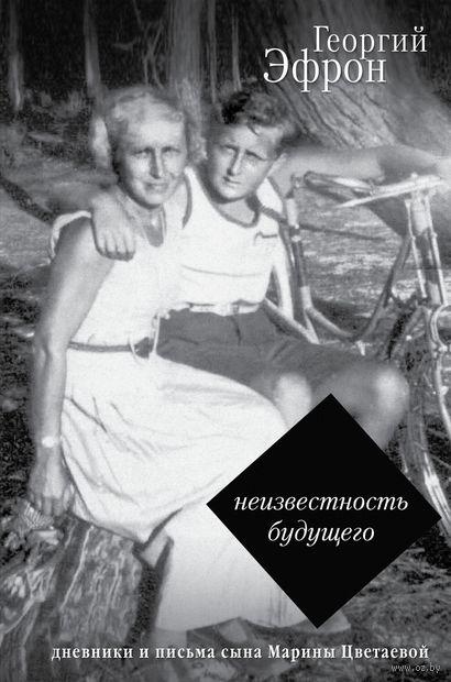 Записки парижанина. Дневники, письма, литературные опыты 1941-1944 годов — фото, картинка