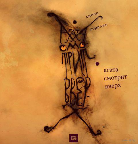 Агата смотрит вверх — фото, картинка