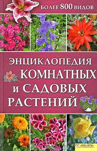 Энциклопедия комнатных и садовых растений — фото, картинка