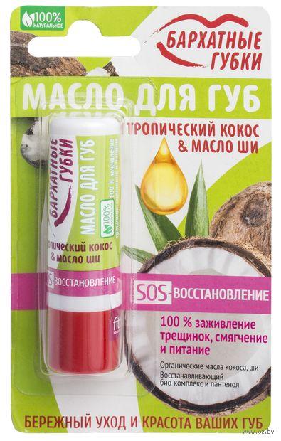 """Масло для губ """"Тропический кокос и масло ши"""" — фото, картинка"""