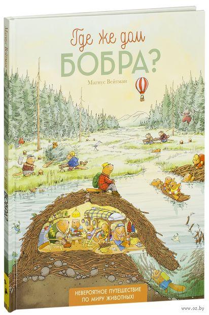 Где же дом бобра? — фото, картинка