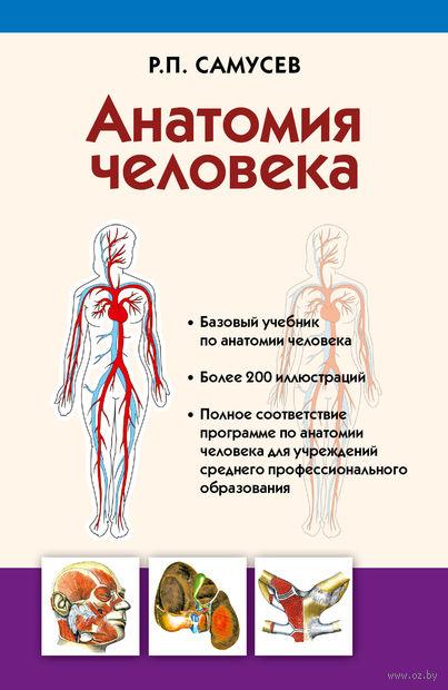 Самусев анатомия человека