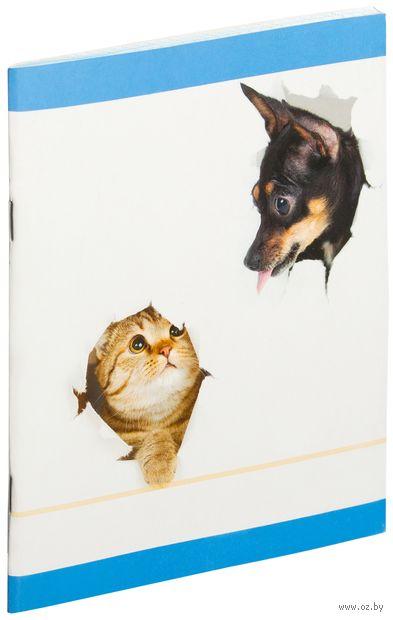 """Тетрадь в клетку 48 листов """"Кот и собака"""""""