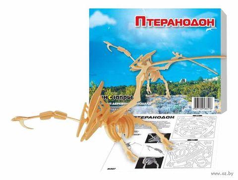 """Сборная деревянная модель """"Птеранодон"""" — фото, картинка"""