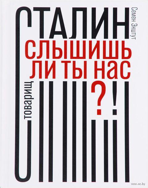 Товарищ Сталин, слышишь ли ты нас?! — фото, картинка