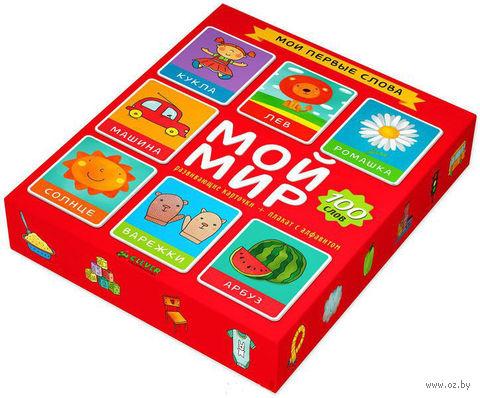 Мой мир. 100 слов. Развивающие карточки (набор из 50 карточек + плакат)