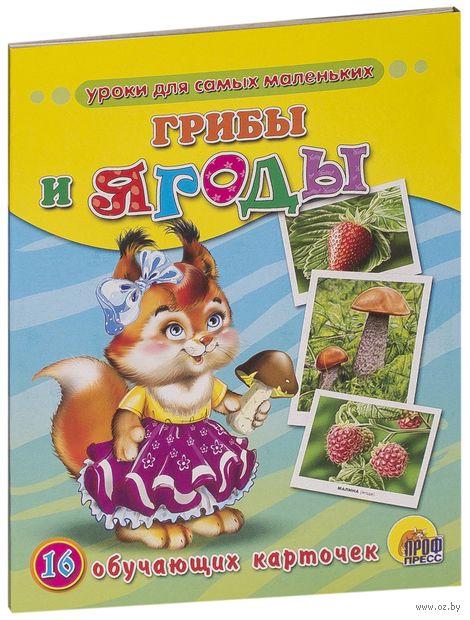 Грибы и ягоды. 16 обучающих карточек — фото, картинка
