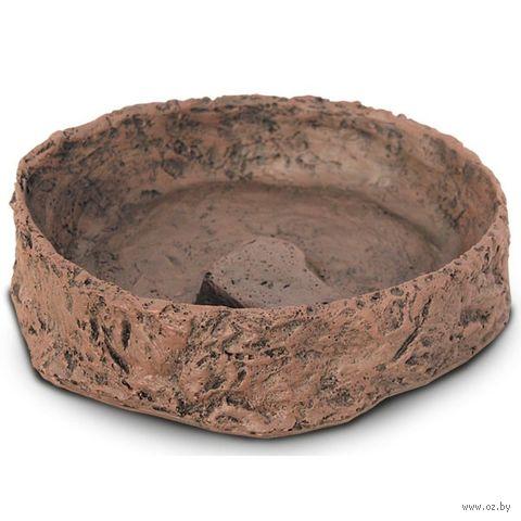 Декорация-кормушка для террариума (19,5х17х5 см) — фото, картинка