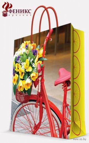 """Пакет бумажный подарочный """"Велосипед с корзинкой"""" (17,8х22,9х9,8 см; арт. 35934) — фото, картинка"""