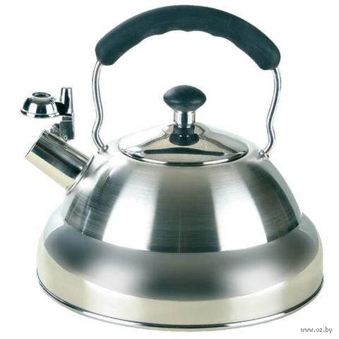 Чайник металлический со свистком (2,6 л; арт. Mr-1335) — фото, картинка