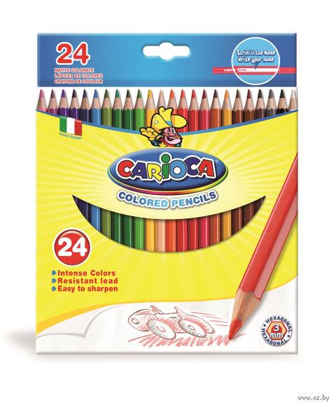 """Набор карандашей цветных """"Carioca"""" (24 цвета)"""