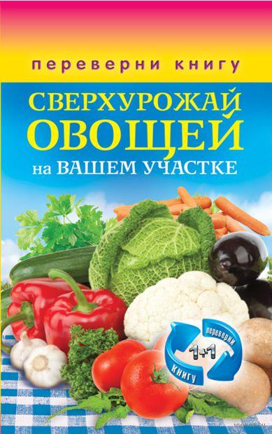 Сверхурожай овощей на вашем участке. Сверхурожай фруктов и ягод на вашем участке — фото, картинка