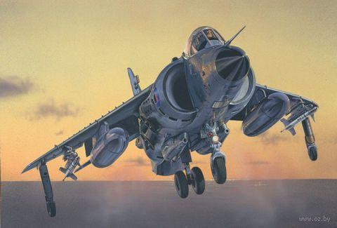 "Истребитель ""Sea Harrier FRS.1"" (масштаб: 1/72) — фото, картинка"