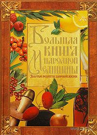 Большая книга народной медицины — фото, картинка