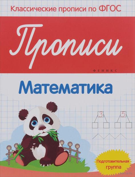 Прописи. Математика. Подготовительная группа — фото, картинка