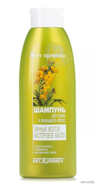 """Шампунь для волос """"Яичный желток и касторовое масло"""" (500 г) — фото, картинка"""