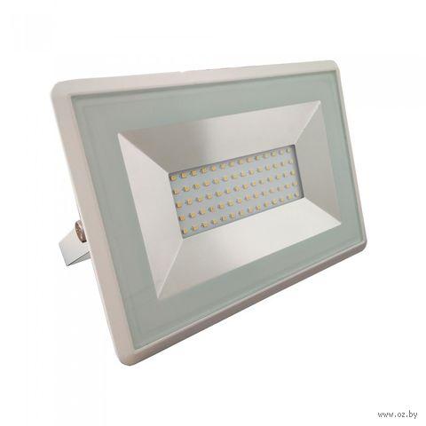 Прожектор светодиодный V-TAC VT-4051 50 W, 4250 LM, 4000 K (белый) — фото, картинка