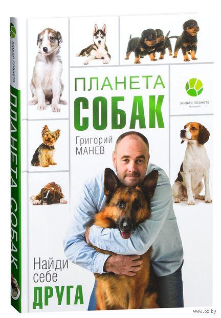 Планета собак — фото, картинка