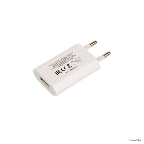 Сетевое зарядное устройство Blast BHA-111 (белое) — фото, картинка