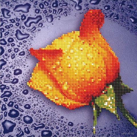 "Алмазная вышивка-мозаика ""Жёлтая роза"" (250х250 мм) — фото, картинка"
