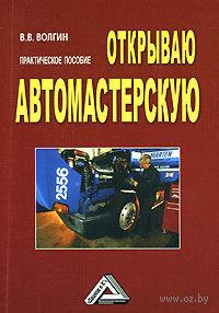 Открываю автомастерскую. Владислав Волгин