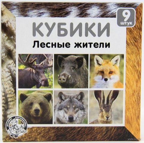 """Кубики """"Лесные жители"""" (9 шт.) — фото, картинка"""