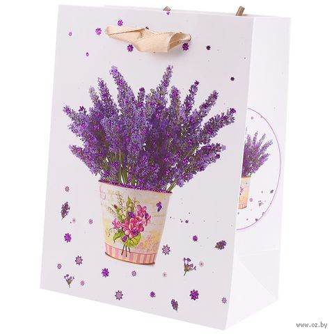 Пакет бумажный подарочный (12х16х6,5 см; арт. DV-9799) — фото, картинка
