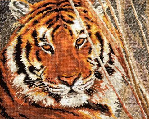 "Вышивка крестом ""Тигр"" (350х280 мм) — фото, картинка"