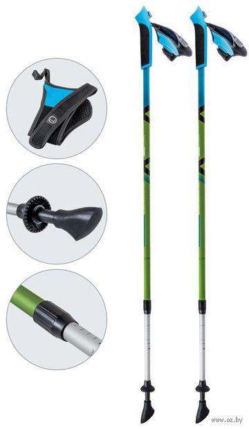 Палки для скандинавской ходьбы двухсекционные AQD-B017 (85-135 см; зелёные) — фото, картинка