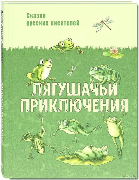 Лягушачьи приключения — фото, картинка