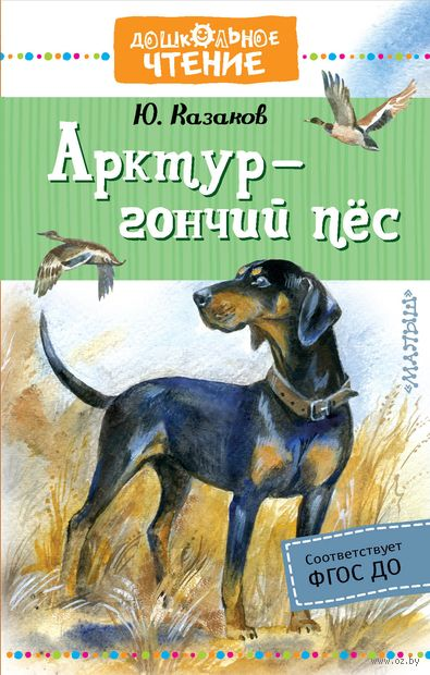 Арктур - гончий пес — фото, картинка