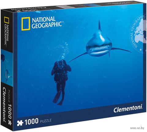 "Пазл ""National Geographic. Дайвинг в Карибском море"" (1000 элементов) — фото, картинка"