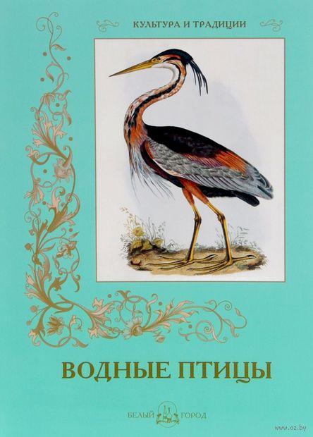 Водные птицы — фото, картинка