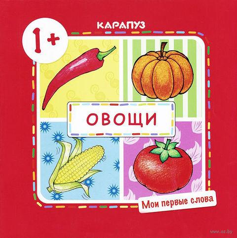 Овощи. Мои первые слова. Для детей от 1-го года — фото, картинка