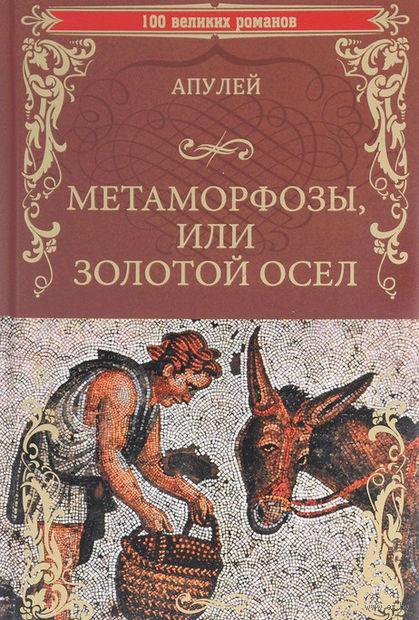 Метаморфозы, или Золотой осел — фото, картинка