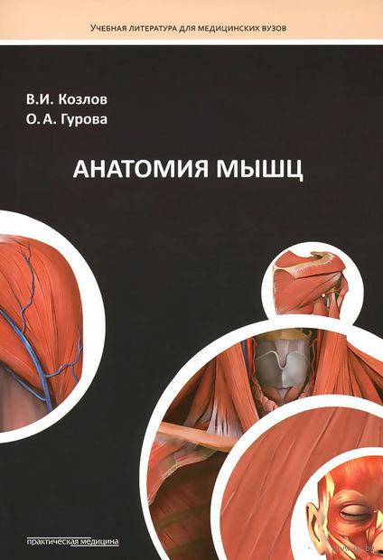 Анатомия мышц. Ольга Гурова, Валентин Козлов