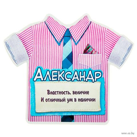 "Магнит пластмассовый ""Александр"" (11,5х9,9 см)"