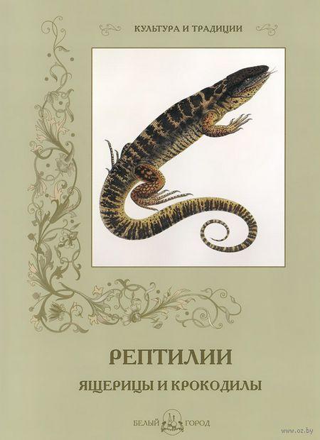 Рептилии. Ящерицы и крокодилы — фото, картинка