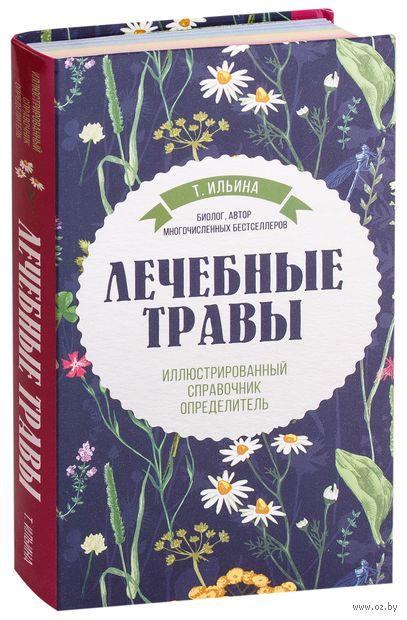 Лечебные травы. Иллюстрированный справочник-определитель — фото, картинка