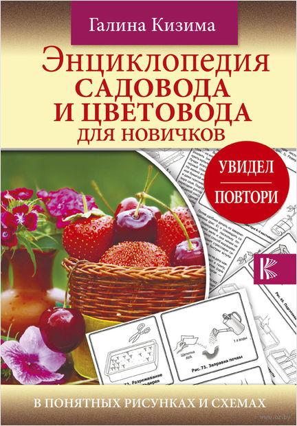 Энциклопедия садовода и цветовода для новичков в понятных рисунках и схемах — фото, картинка