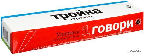 Тройка по русскому (комплект из 360 карточек)