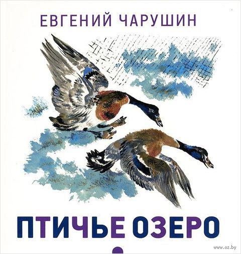 Птичье озеро. Евгений Чарушин