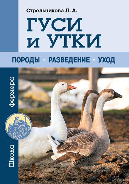 Гуси и утки. Л. Стрельникова