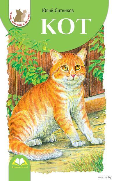 Кот — фото, картинка